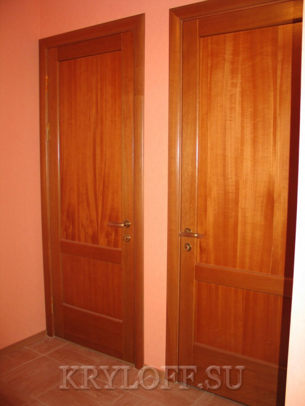 Дверь из дерева 09
